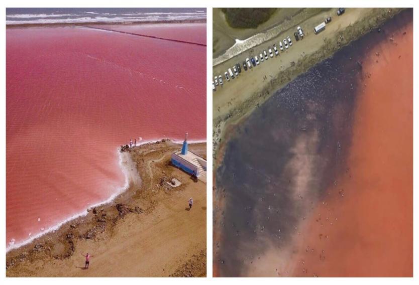 Así quedó el 'mar rosado' de Colombia luego de Semana Santa