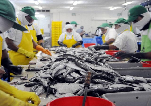 En Semana Santa cada vez impacta menos en el consumo de pescado
