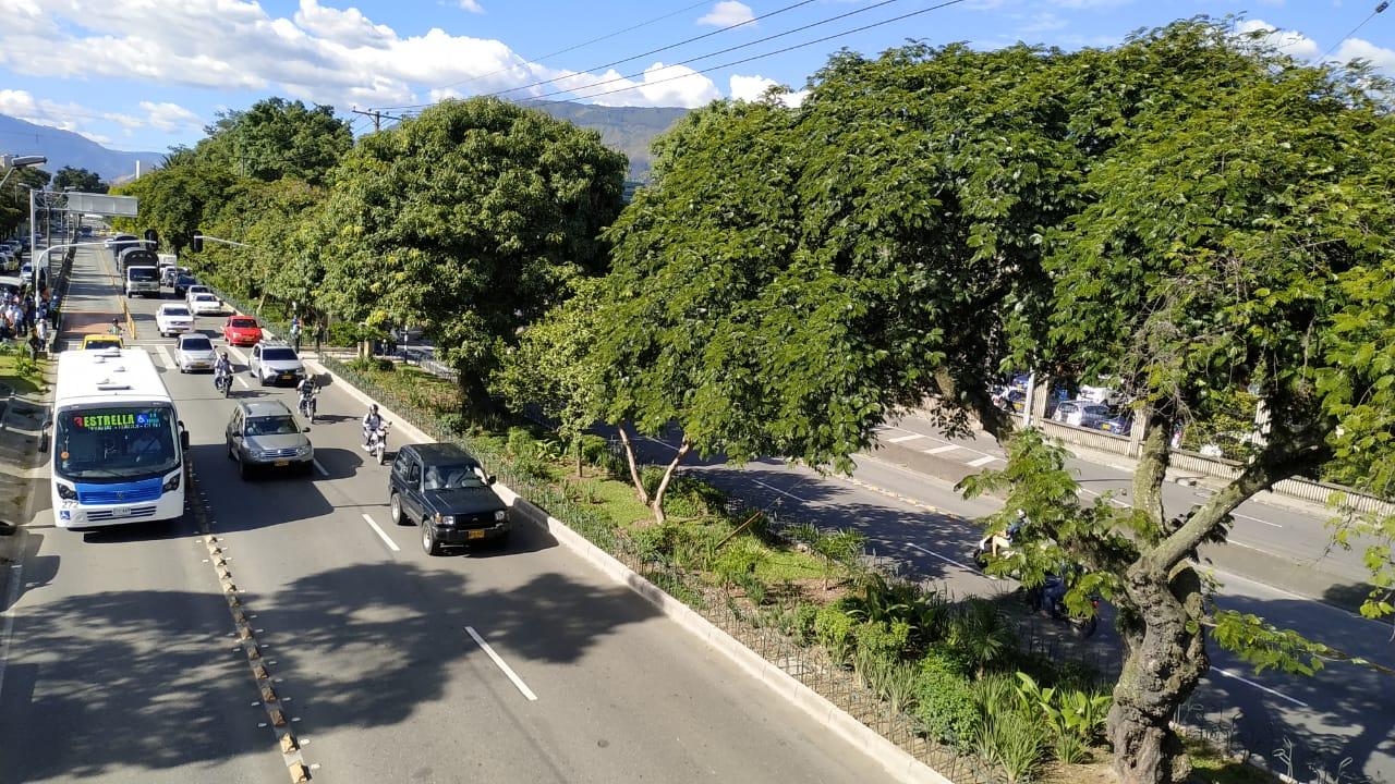 Así es el Corredor Verde de la Avenida Guayabal