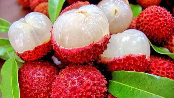 Componente de una fruta sería culpable de la muerte de 31 niños