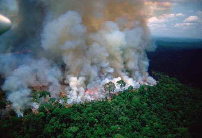 (Videos): La Amazonía arde en uno de los incendios más grandes de la historia