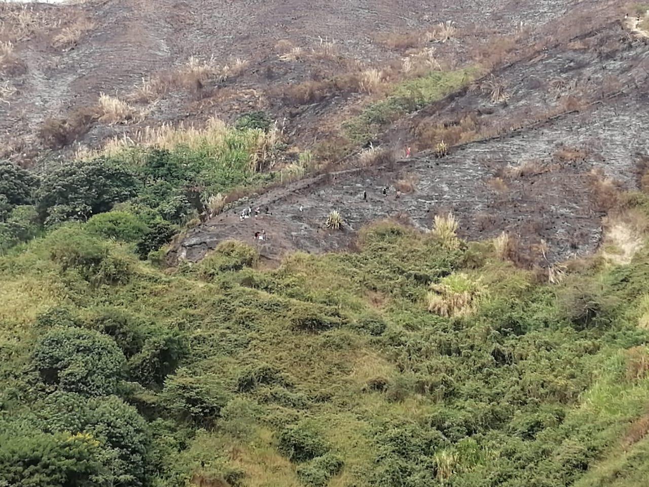 Autoridades ambientales explican por qué no se debe sembrar en terrenos incendiados