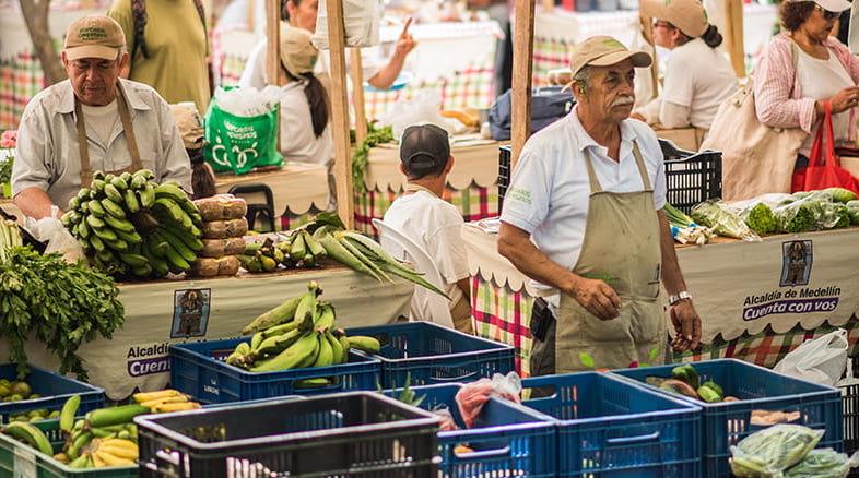 Con mercados campesinos y agro ferias, campesinos reactivan su economía