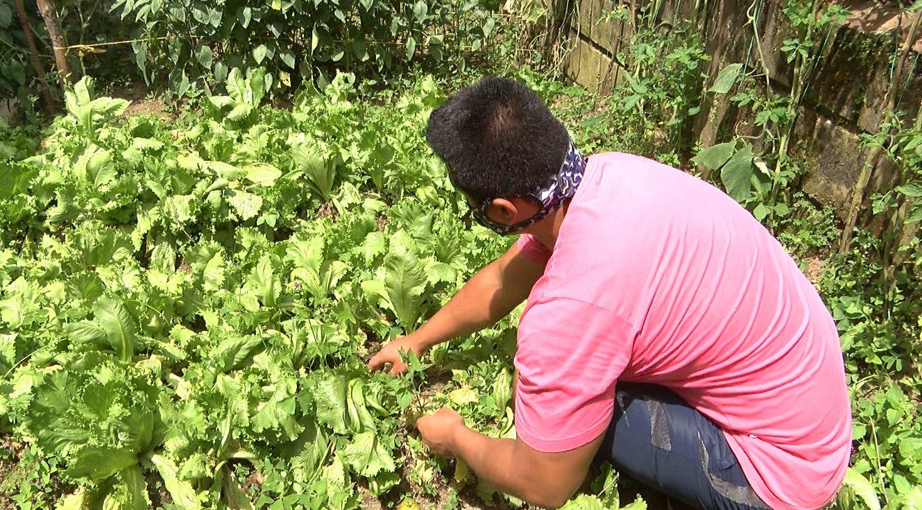 Internos de la cárcel de La Estrella producen alimentos para los más necesitados