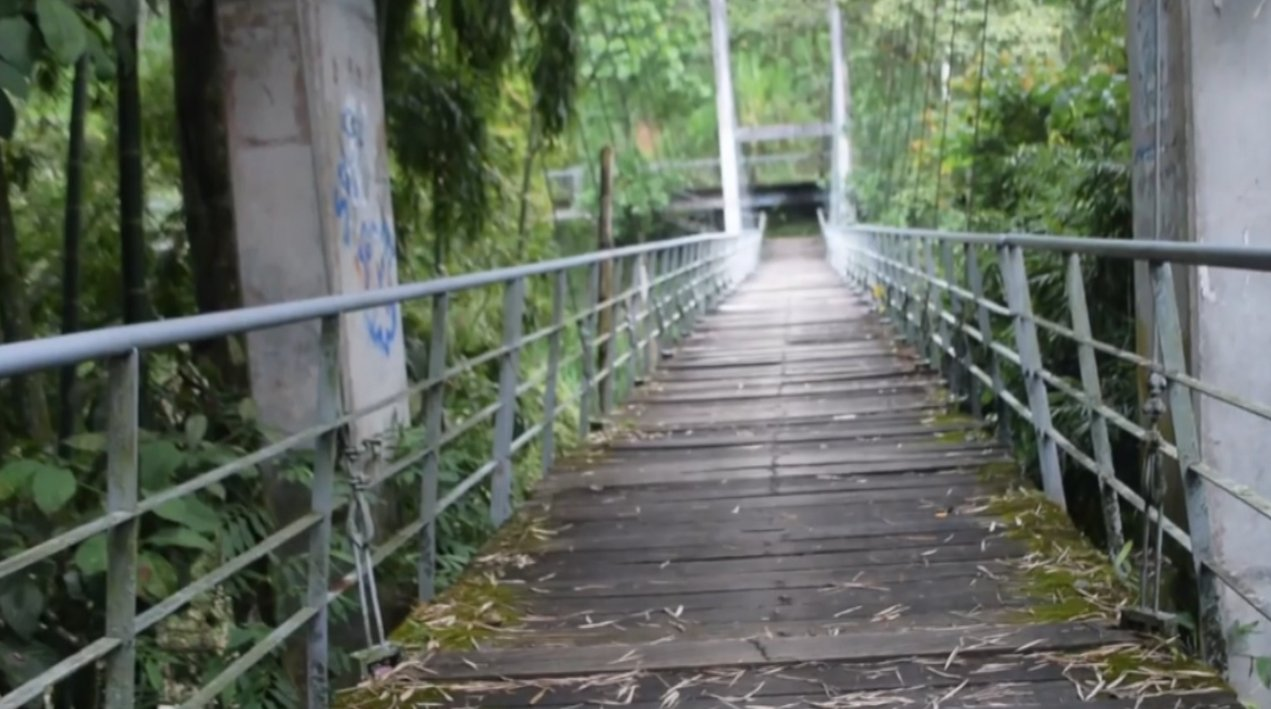 Avanza intervención de los puentes de sendero ecológico de Andes - Telemedellín
