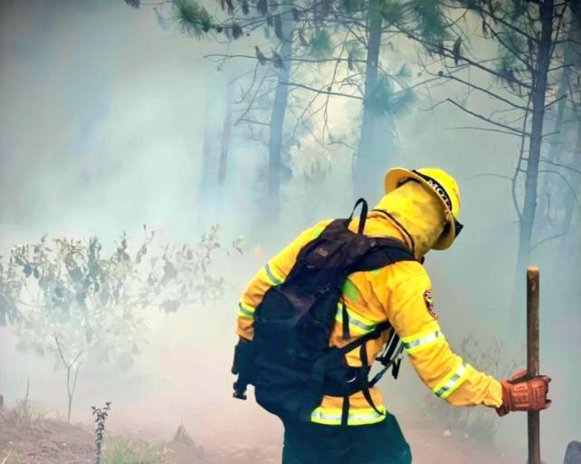 (Video) Se presenta nuevo incendio en el cerro Quitasol de Bello